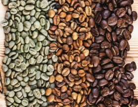 Charleston Coffee Roasters - Stages of Roasted Beans